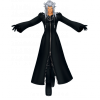 worlds-ttnw-enlarged-xemnas