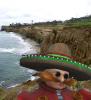 eggy cliff selfie.png