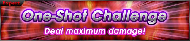 1shot Dmg challenge