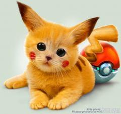 Pikachu Kitty shopped