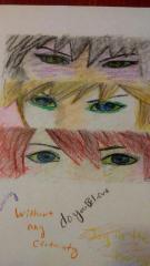 The eye's