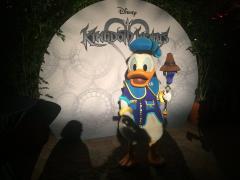 Donald Duck at Disney Vacation Club Member's Moonlight Magic