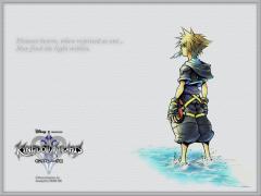 Kingdom Hearts II, Japanese website