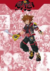 Character Card - Sora