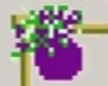 FlyingEggplant's Photo
