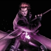 Stray Reaper's Photo